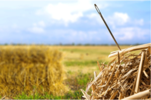 Finding Your Niche In A Haystack